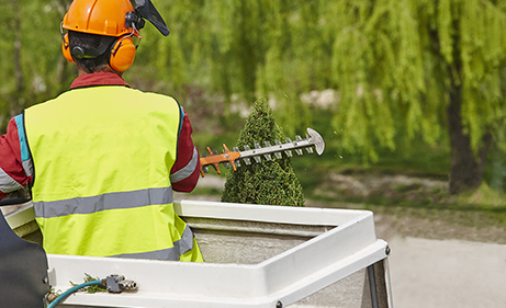 Tree-Removal-Fontenot-Landscaping-Services-Metro-Detroit-MI-Gallery